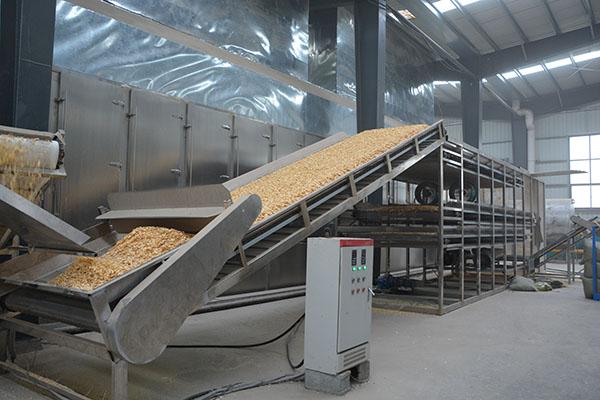 蒜片生产线